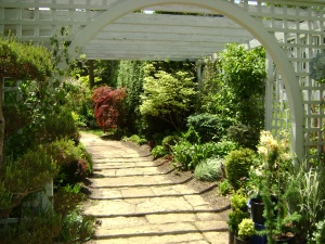 A lovely Arched Pergola