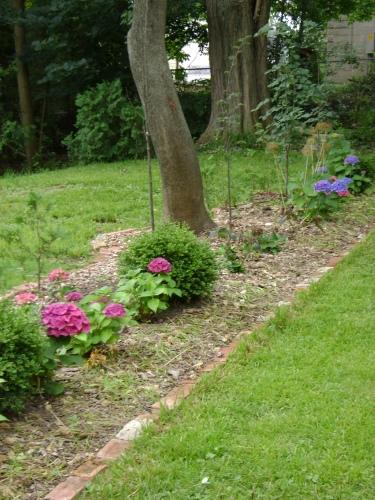 gardenAug09 075