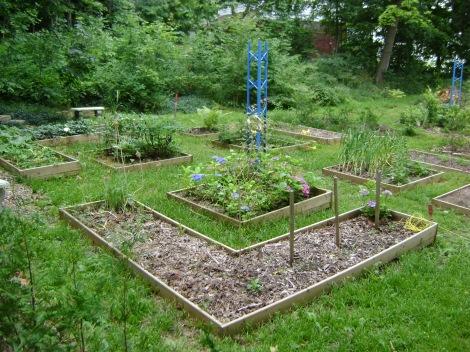 gardenAug09 110