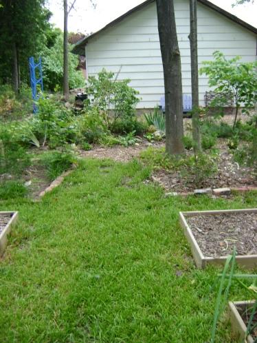 gardenAug09 117