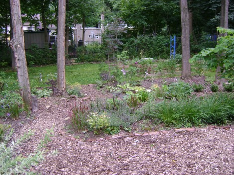 gardenAug09 119