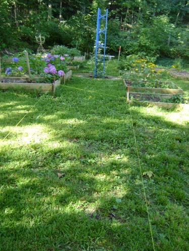gardenSept09 033