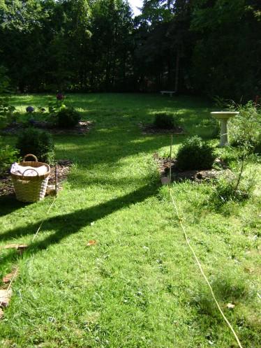 gardenSept09 034