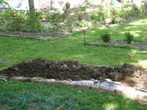gardenSept09 039