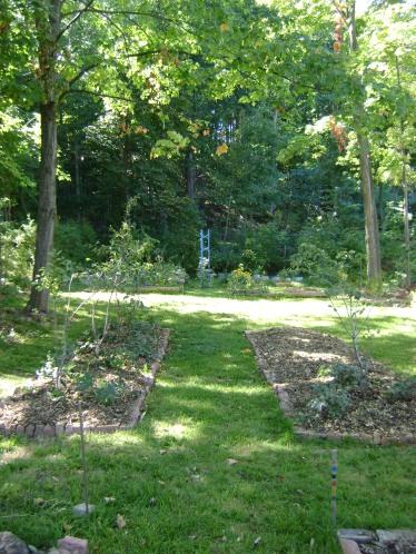 gardenSept09 087