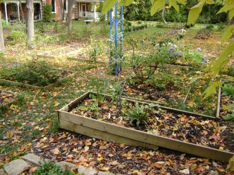 gardenOct09 064