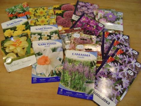 gardenOct09 126