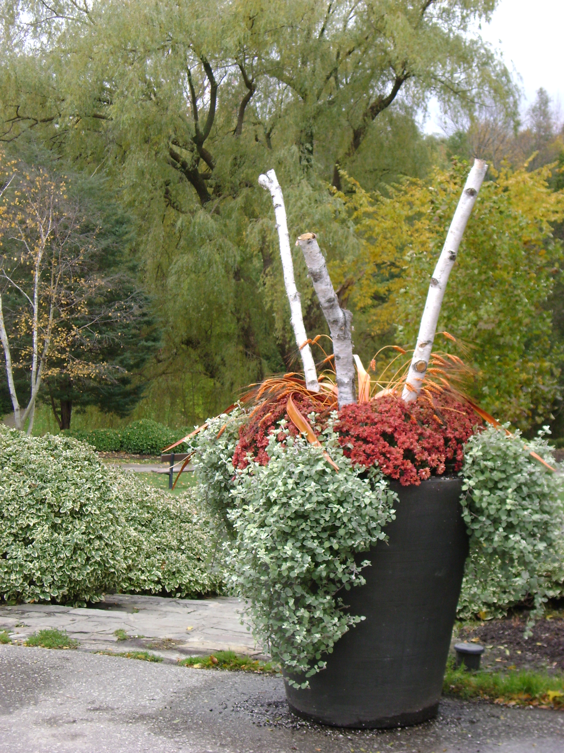 Outdoor Christmas Urns http://kilbournegrove.wordpress.com/tag/outdoor-urns/