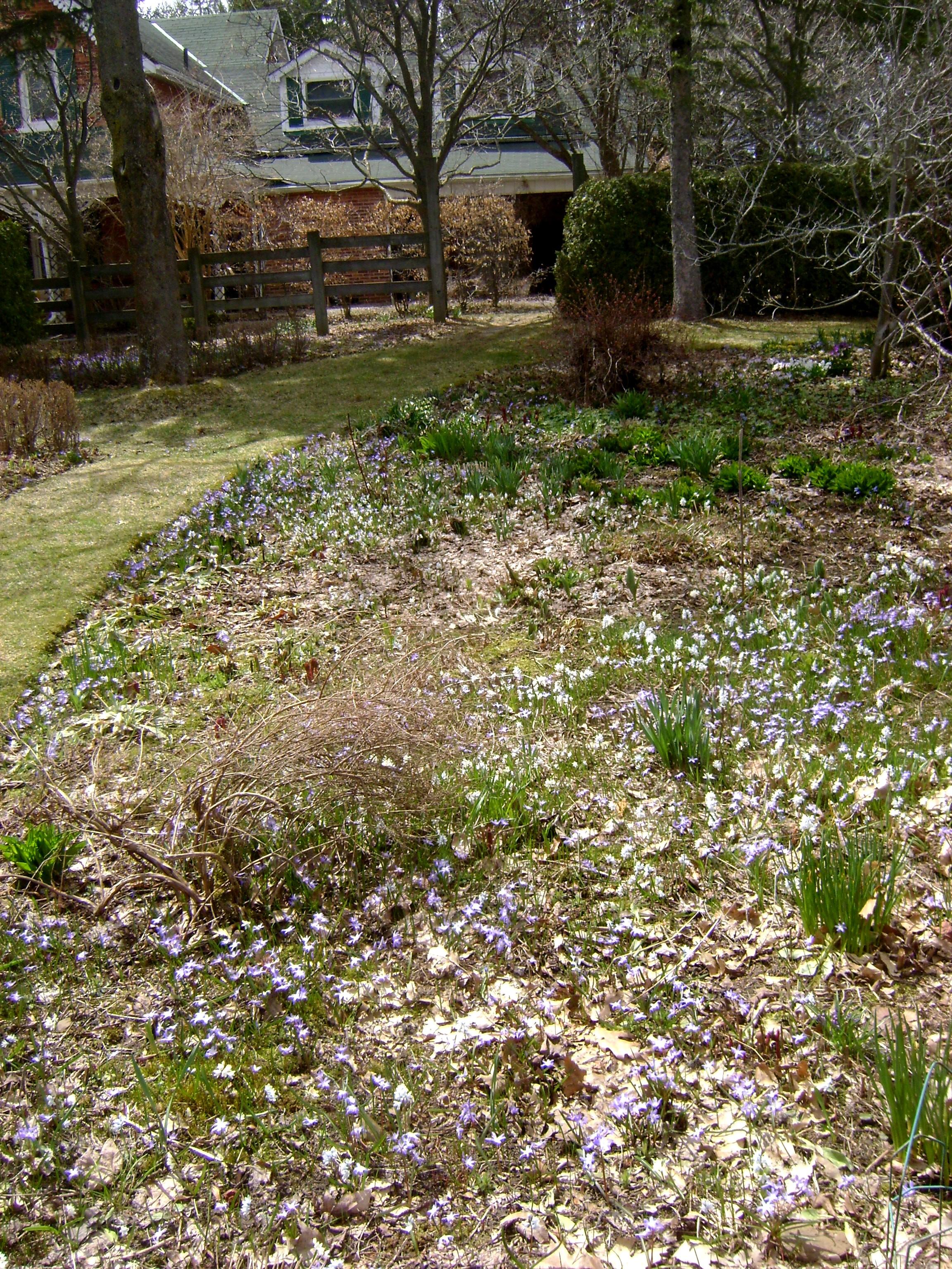 garden visits | Green Theatre