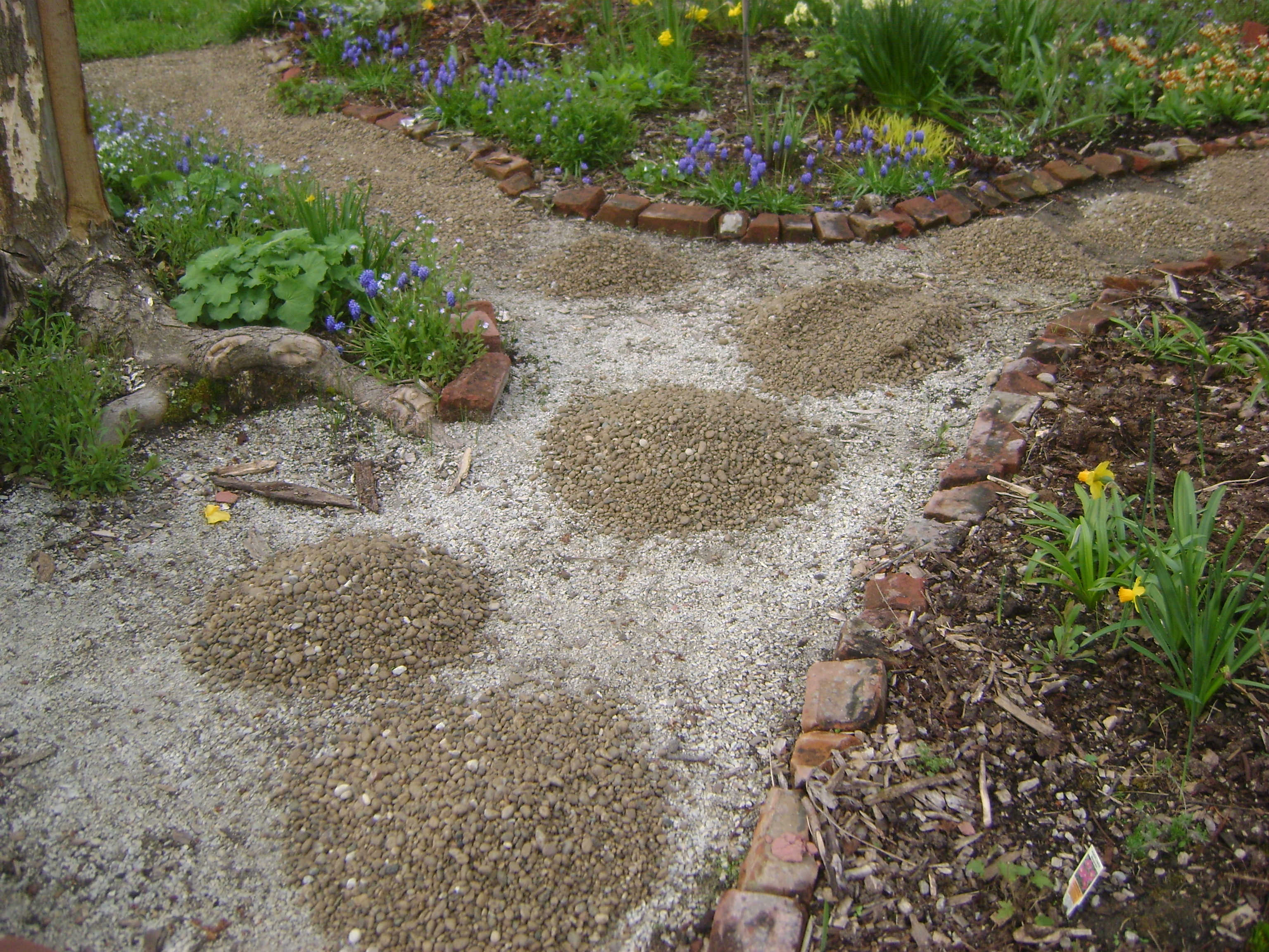 Pea gravel and stepping stones we had pea gravel paths when